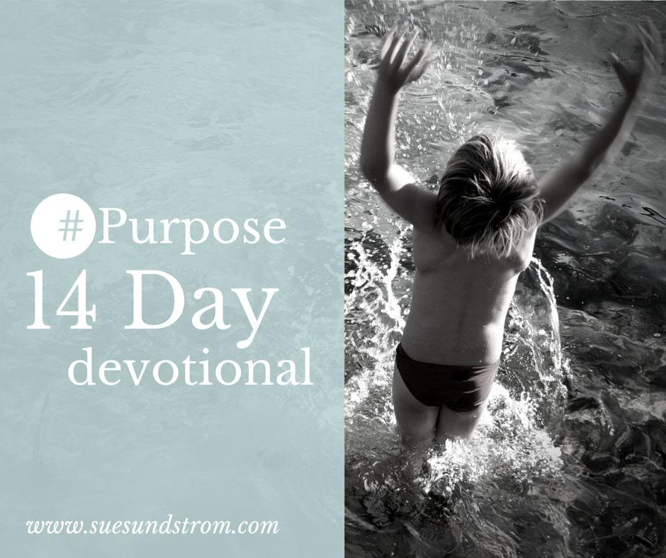 Day #1: Purpose involves Passion