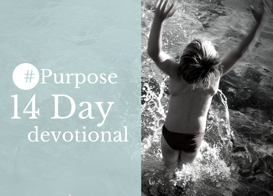 Day #2 : Purpose is not Passive