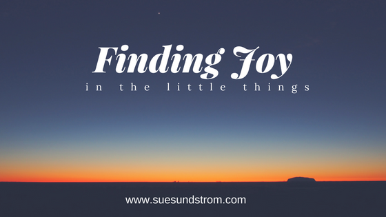 Finding joy in the little things in life